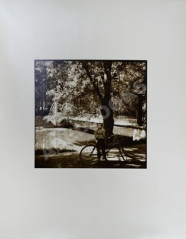 Гринберг, А.Д. Фотография «В Кузьминках. Велосипедист»